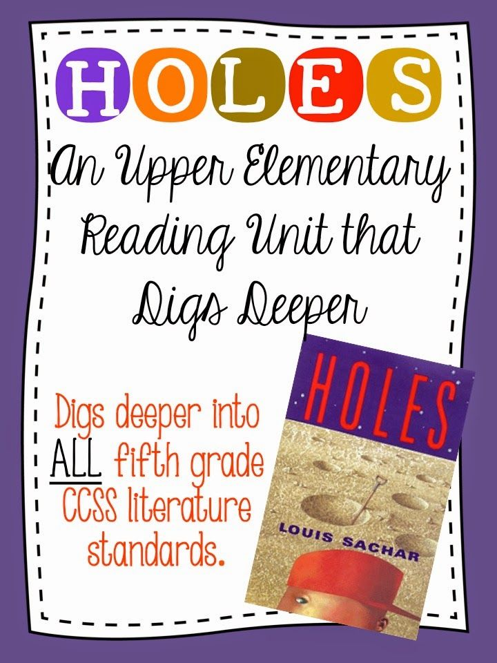 novel study guides for the classroom holes