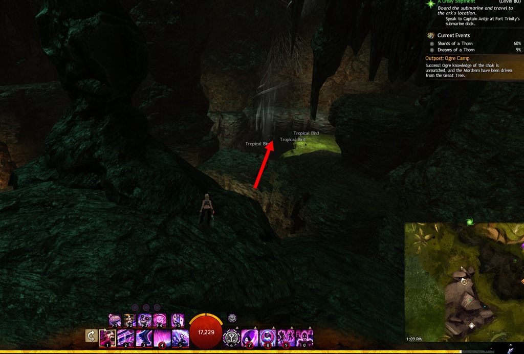 gw2 knight of the thorn guide