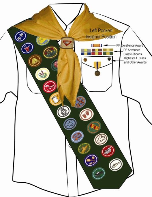 guides nsw sash badge plasement
