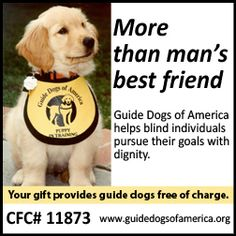 how are guide dogs trained guide dog