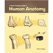 a visual analogy guide to human anatomy krieger torrent