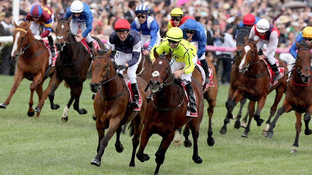 herald sun form guide for melbourne cup