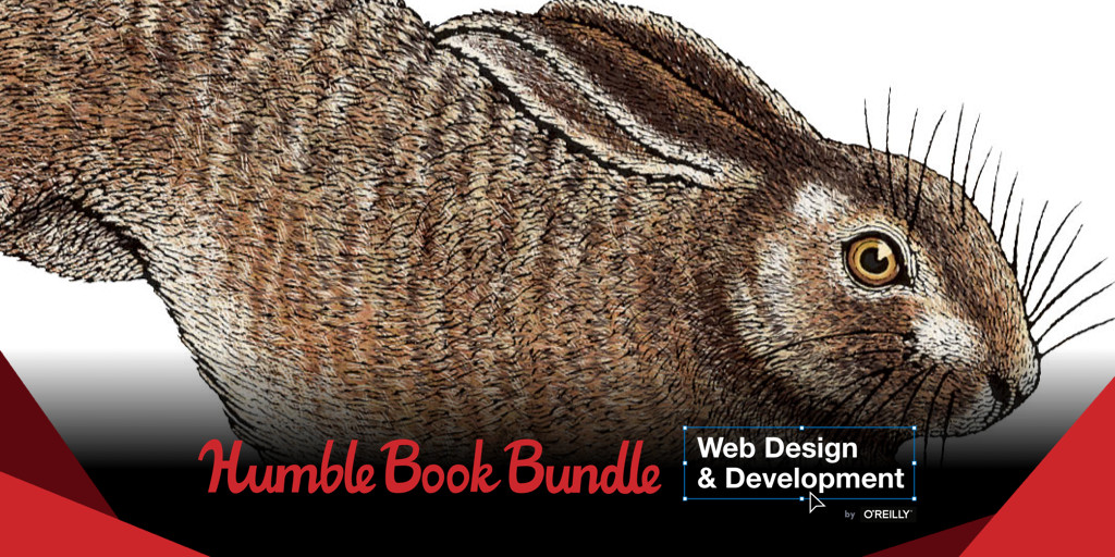 css the definitive guide epub