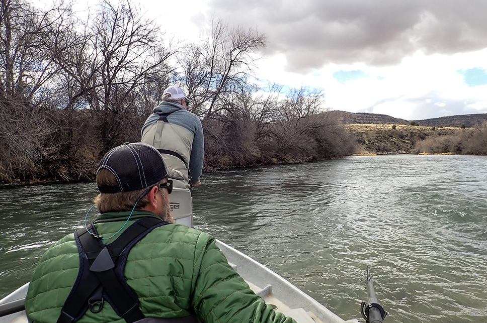 san juan river fishing guides