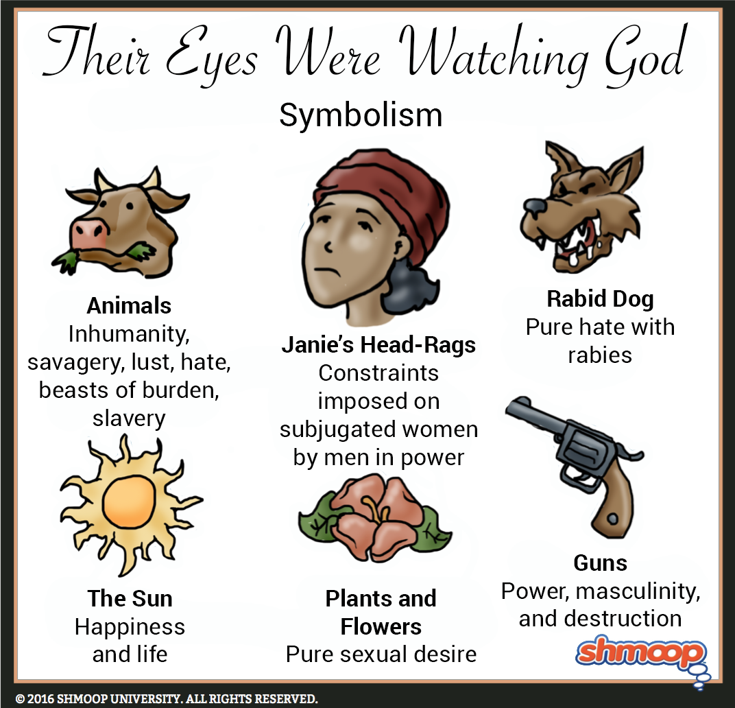 the eyes were watching god study guide answers