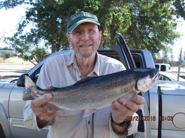 new melones lake fishing guides